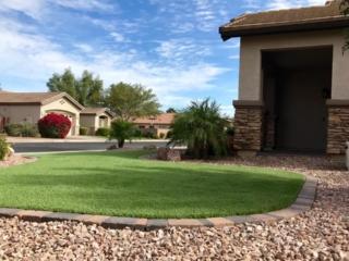 Front Yard Remodel - Artificial Grass - Chandler AZ