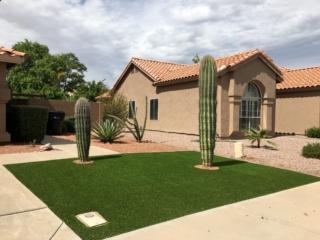 Artificial Grass Installation – Queen Creek AZ – Cactus Landscaping – The Yard Stylist