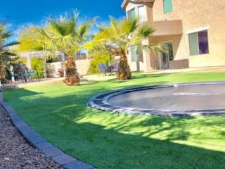 Artificial Grass – Lawn Edging – in Ground Trampoline – Tropical Trees – Yard Stylist – AZ