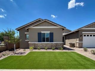 Artificial Grass – Paver Walkway – Plants – Yard Stylist – Queen Creek Station Arizona