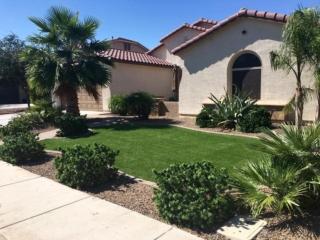 Artificial Grass – Plants – Landscaping – Front Yard – Yard Stylist – AZ